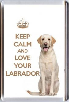 KEEP CALM and LOVE YOUR LABRADOR with an image of a Cream Labrador DOG Fridge Magnet